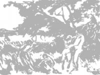 Ernst Ludwig Kirchner, Spielende nackte Menschen, 1910